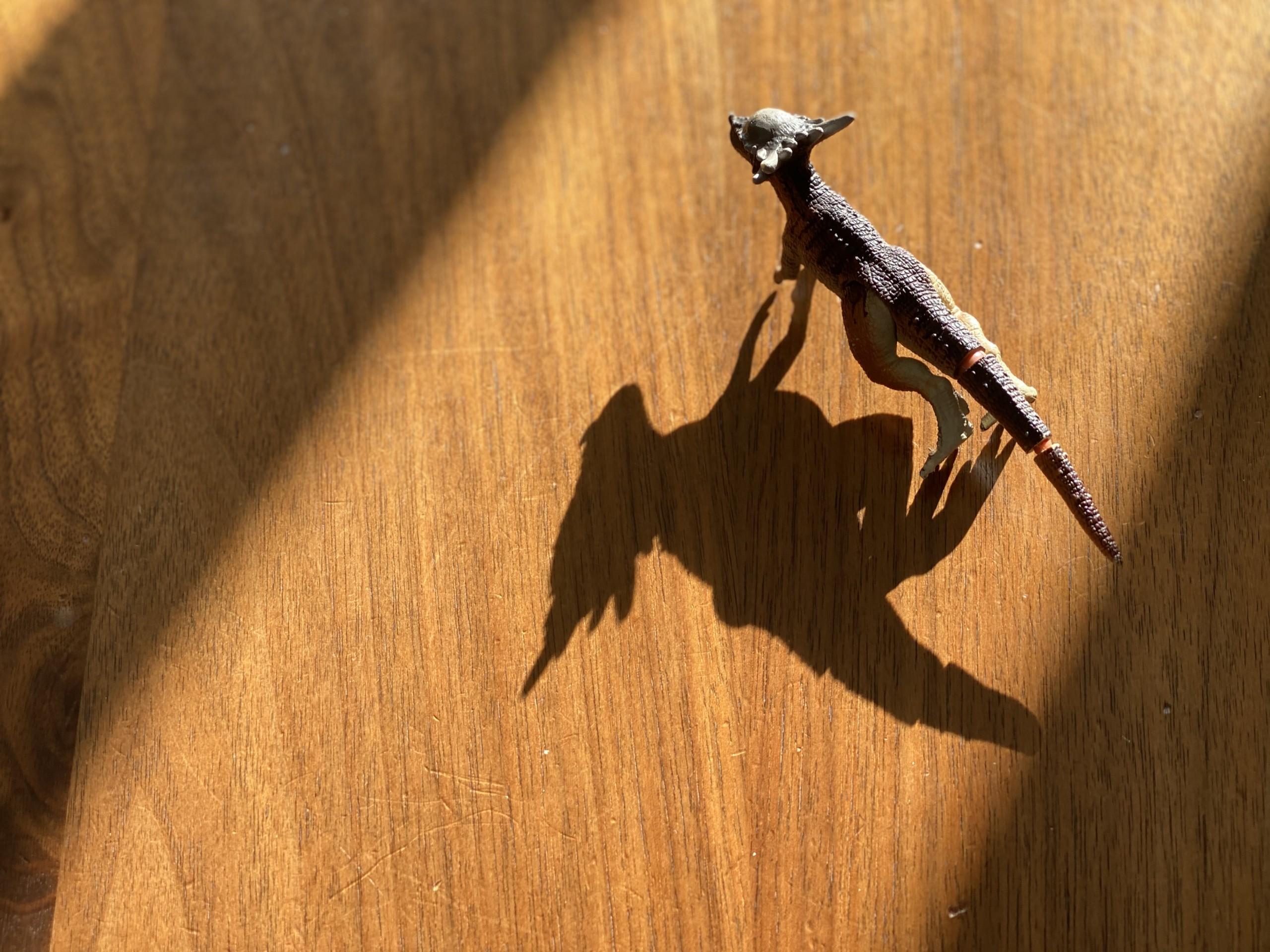 恐竜の影が伸びる