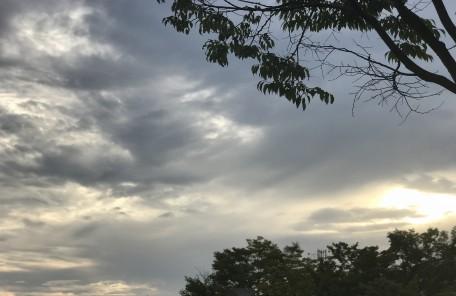 空 木 太陽の光