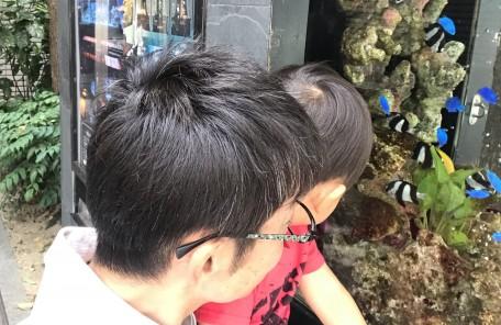 抱っこ 親子 熱帯魚